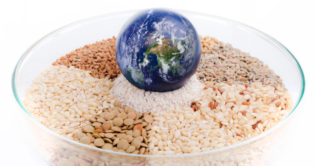Research published in the science journal Nature reports that, compared to baseline projections for 2050, moving to a more plant-based flexitarian diet could reduce greenhouse gas emissions by as much as 52 per cent.